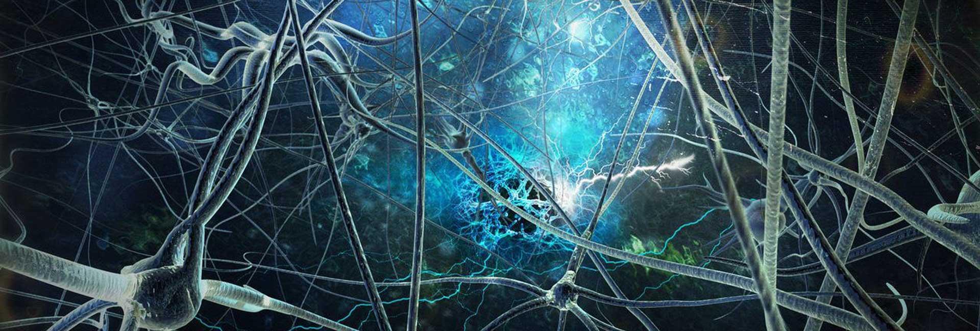 neuroni1